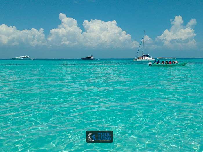 excursie walvishaai riviera maya